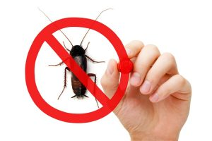 pest-control-1-300x200.jpg