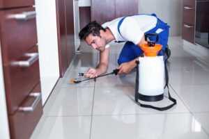 residential-pest-control-300x200.jpg